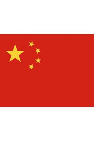 Fahne China